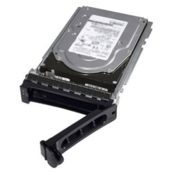 "Dell 2 TB Hard Drive - Near Line SAS (NL-SAS) (12Gb/s SAS) - 3.5"" Drive - Internal"