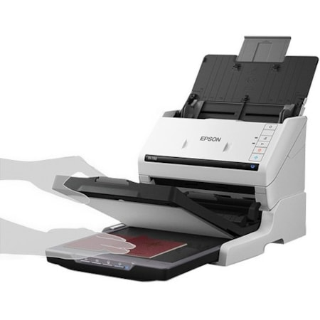 Epson Scanner Accessory