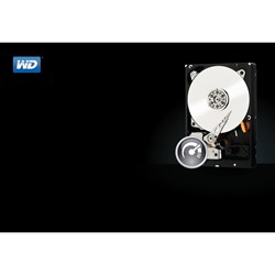 "WD Black WD2003FZEX 2 TB Hard Drive - 3.5"" Internal - SATA (SATA/600)"