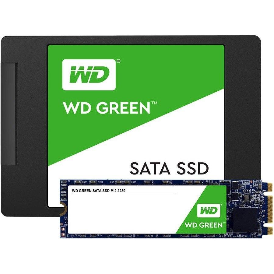WD Green WDS240G2G0B 240 GB Solid State Drive - M.2 2280 Internal - SATA (SATA/600)