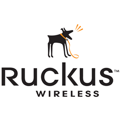 Ruckus Wireless PoE Injector