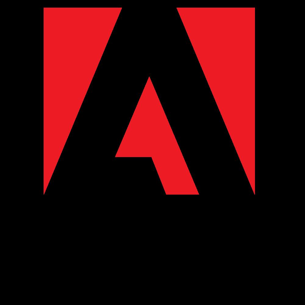Adobe Bronze Support - 1 Year - Service
