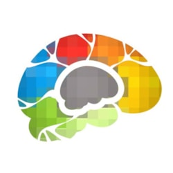 Bigger Brains eLearning - Per User
