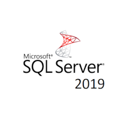 Microsoft Sqlserverstandardedition 2019 SNGL Olp 1License Nolevel